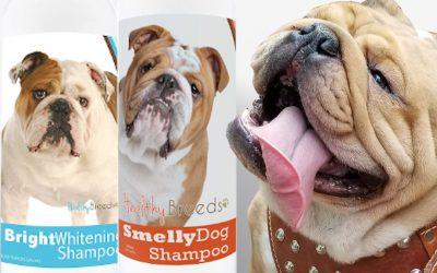 Champú para perros Bulldogs