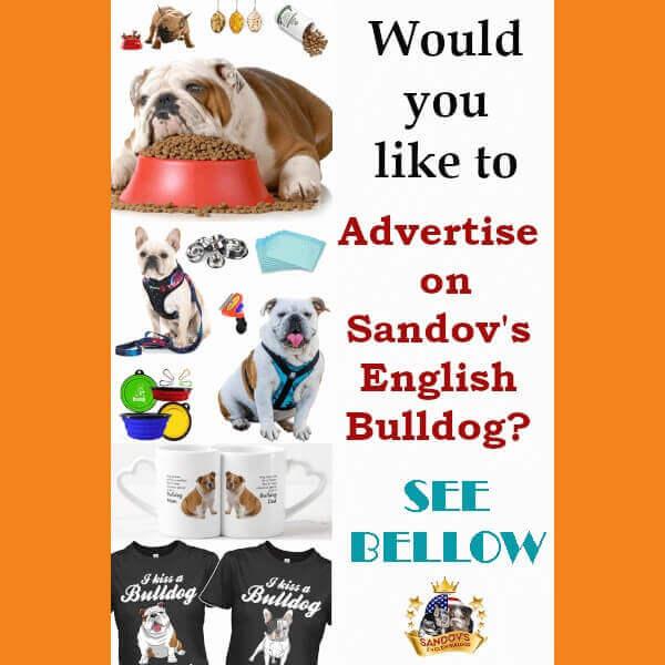 Advertising Sandov
