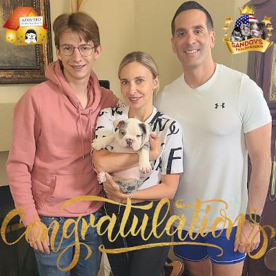 Puppy French Bulldog New Owner